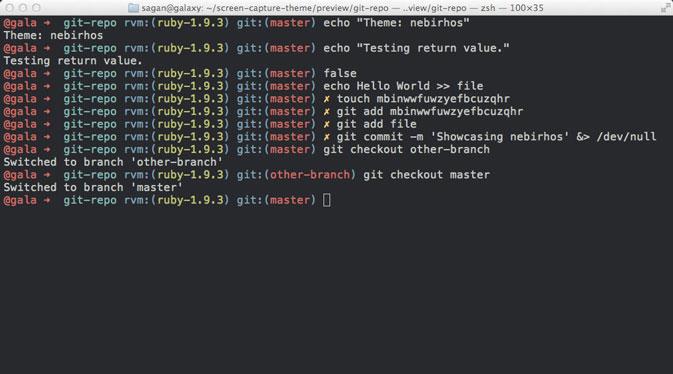 Oh My ZSH ubuntu 14.04